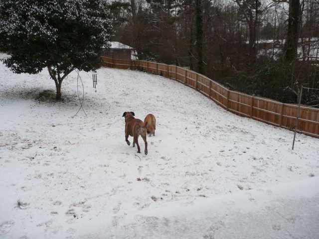 Snow 1-09